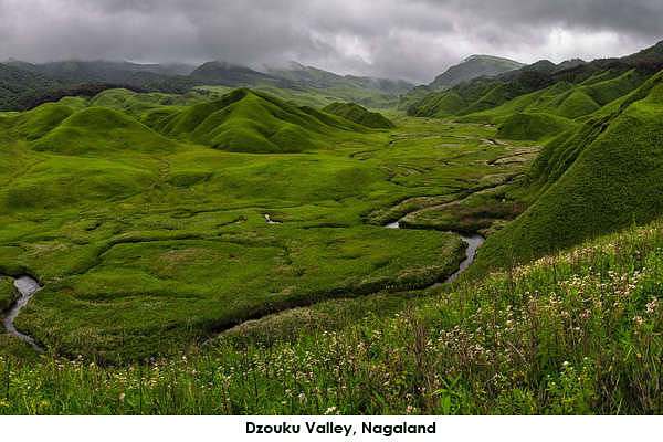 The Dzouku Valley, is a picturesque place with a lot of natural beauty and is also known as the Valley of Flowers. One of the best times to visit this place is in June-July.Trekkers love this place for the climbs and caves.