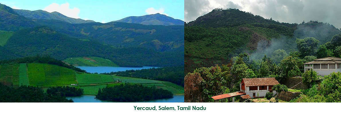 Yercaud is a small town located about 30 kms from Salem, Tamil Nadu. The hills from Salem contain about 20 hair pin bends and the journey is breath-taking. A lot of waterfalls can also be seen on the way when there is heavy rain.