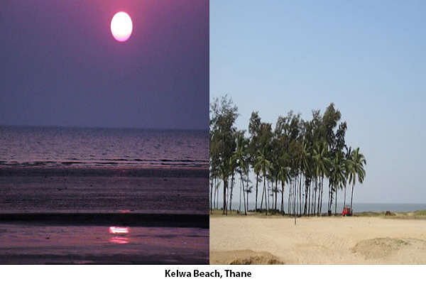 Kelwa Beach is one best beach around Mumbai and very easily accessible. Surrounded by teak trees from all sides it provides a great view.